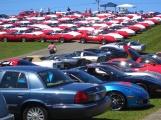 Corvettes at Carlisle - 2012ette
